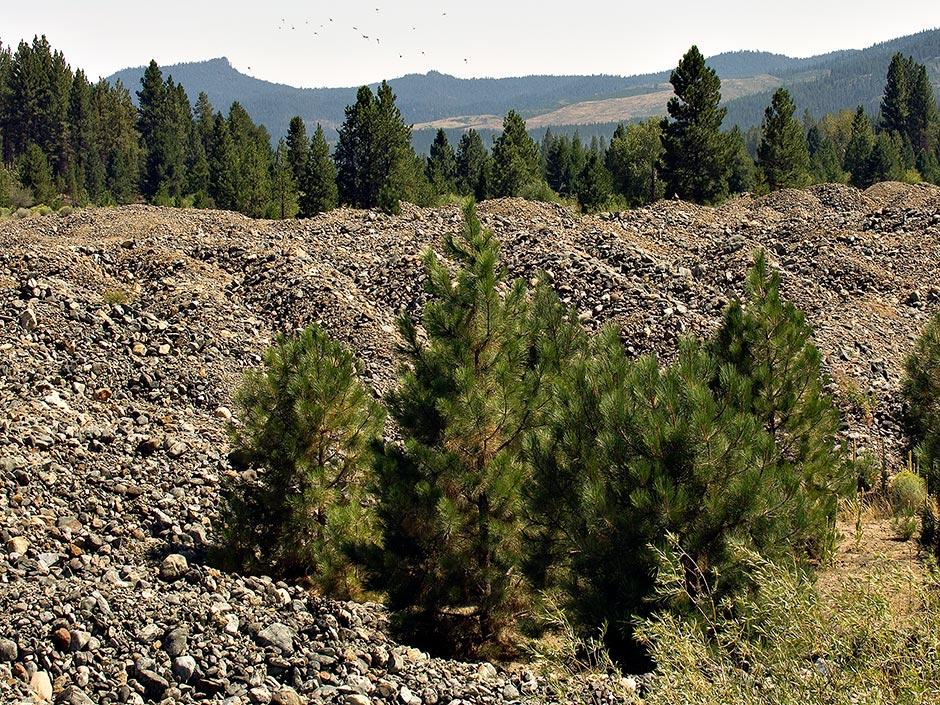 Sumpter Dredge Tailings|Baker County Oregon photo for sale