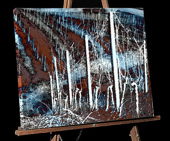 Winter Snow scene Painting; Snow on stakes and Winter Grapes,canvas print, Willamette Valley Vineyard