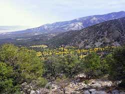 Great Basin NP Photo Nevada Death Valley Mono Lake Mojave Desert
