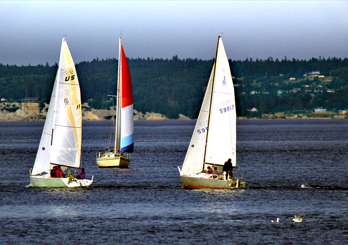Three colorful Sailboats on Puget Sound