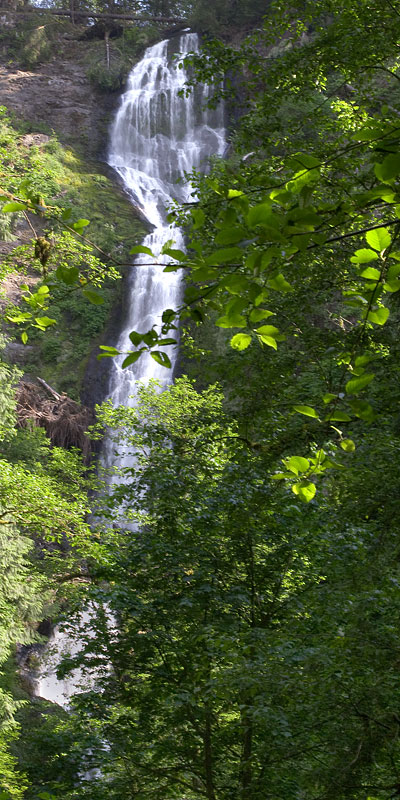 Vertical Panorama of Munson Creek Falls, Tillamook, Oregon