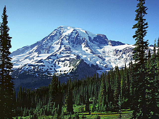 Mt. Rainier from Highway 706, Gifford Pinchot National Forest